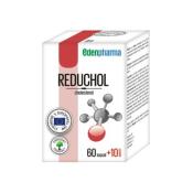 Edenpharma Reduchol 60 + 10 cps
