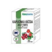 EdenPharma Kapucínka väčšia Akut Forte 20TBL