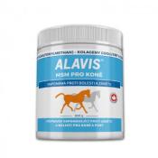 Alavis MSM pre kone prášok