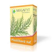 MEGAFYT Prasličková vňať sypaný čaj 30g + MEGAFYT Jahody & granátové jablko porciovaný čaj 20x2g ZDARMA