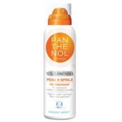 PANTHENOL Omega Chladivá pena 10% 150 ml