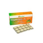 Naturica MAGNEZIUM 250 mg+B6+Ginkgo+vitamín E 30 tbl